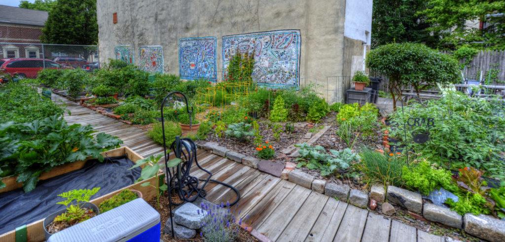Bodine Street Community Garden Photo